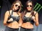 Laski w obiektywie podczas MotoGP Australii
