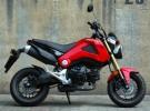 Honda dla wyluzowanych - zdj�cia MSX 125