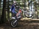 Terenowo-rozrywkowy KTM - fotogaleria Freeride 250R