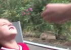 Wyrywanie zęba za pomocą motocykla
