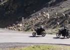 Yamaha FJR1300 w Alpach