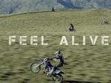 feel alive z