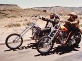 easy rider  z