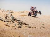 Rafal Sonik Sealine Cross Country Rally pustynia z