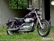 Harley Davidson Sportster 1200 1