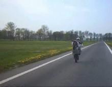 skuter wheelie stp01