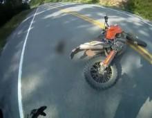 Zderzenie motocyklem z dzika zwierzyna