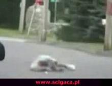 wheeliefall