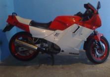 20110106007