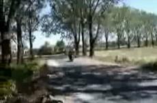 Suzuki Bandit2