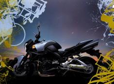 Suzuki B-King 1680x1050