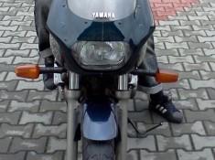 IMG20101120 017