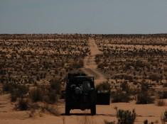 Bezdroza pustyni