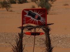 KTM pustynia