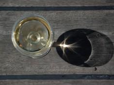 Glebia wina