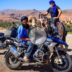 Maroko na motocyklu wielblad z