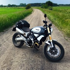 Ducati Scrambler 1100 z