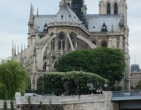 Notre Dame z oddali