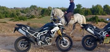Testujemy nowego Triumpha Tigera 900 w Maroku. Znamy już ceny!