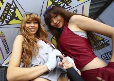 Piękne dziewczyny na GP Malezji