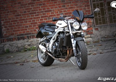 Speed Triple 955 - Triumph na bombie