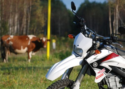 Yamaha WR250R zdjęcia