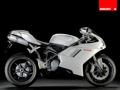 848 bialy