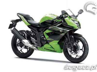 Kawasaki-Ninja-RR 19013 1