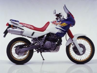 nx650dominator3