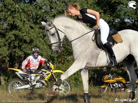 konie motocykle 1