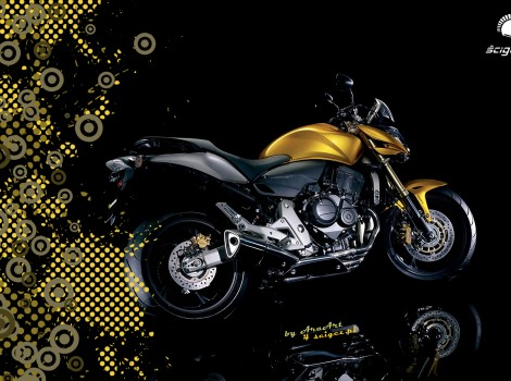 Honda Hornet 1680x1050