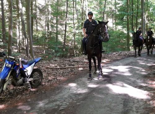 Szczecin - obława na motocyklistów, której... nie było