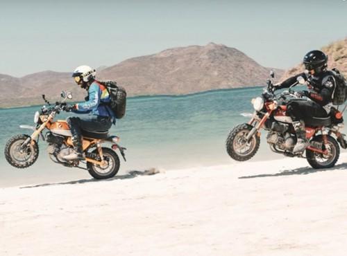 Kalifornijska przygoda. 1500 km na dwóch Hondach Monkey 125 [FILM]