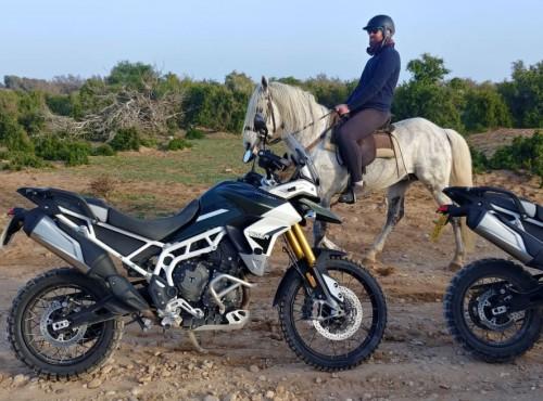 Testujemy nowego Triumpha Tiger 900 w Maroku. Znamy już ceny!