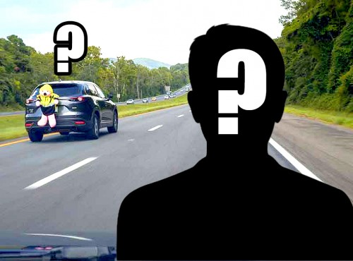 IIHS i eksperyment z wielkim pluszowym misiem. Jak spostrzegawczy są kierowcy na drodze?