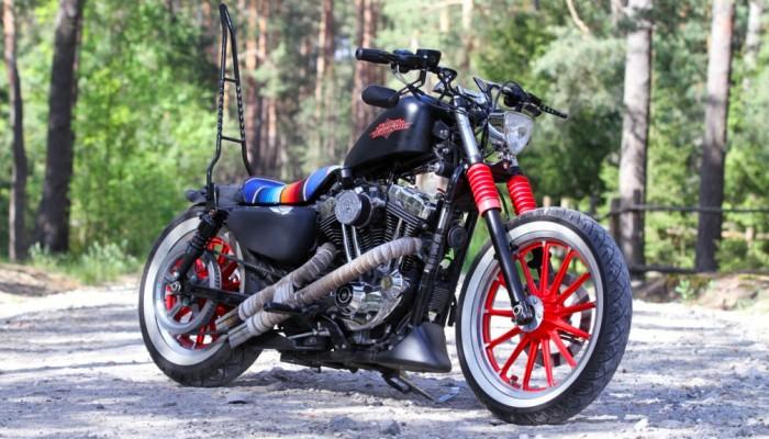 13 Custom Harley Davidson Sportster plener z