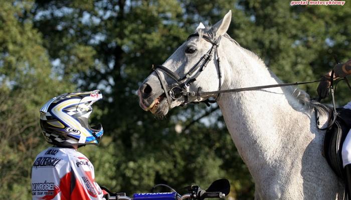Konie mechaniczne kontra konie, czyli koń vs motocykl