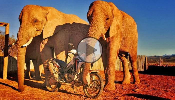 Zwycięzcy konkursu Motul Afryka Tour w drodze na Czarny Ląd