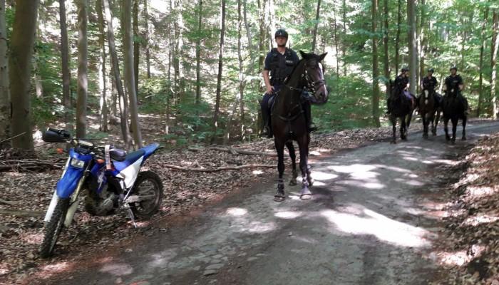 straz lesna na koniach z