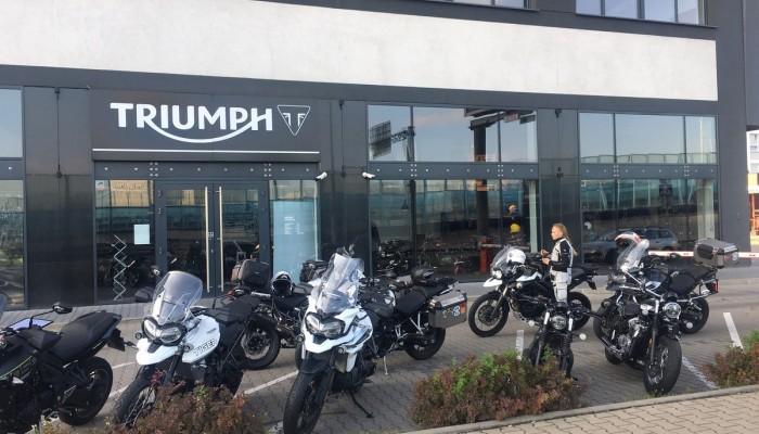 Nieoczekiwany atak Tygrysów w salonie Triumph Warszawa!