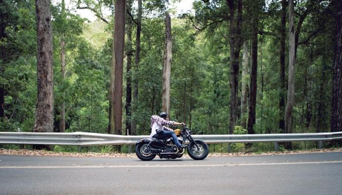 moto ride forest z