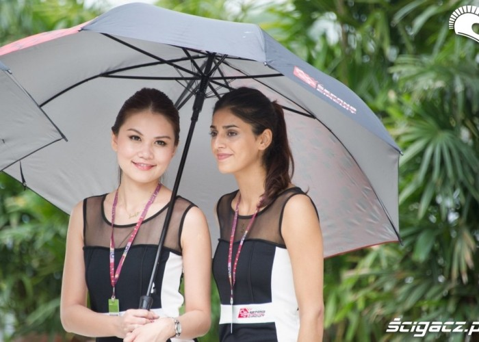 Local Paddock Girls Sepang