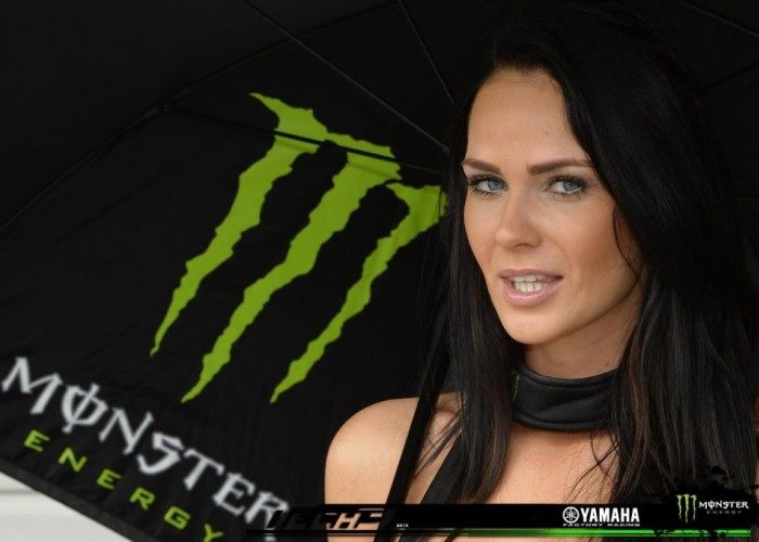 Hostesa Monster Sachsenring 2013