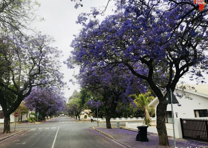 Marzenia Motul Afryka Tour RPA 15