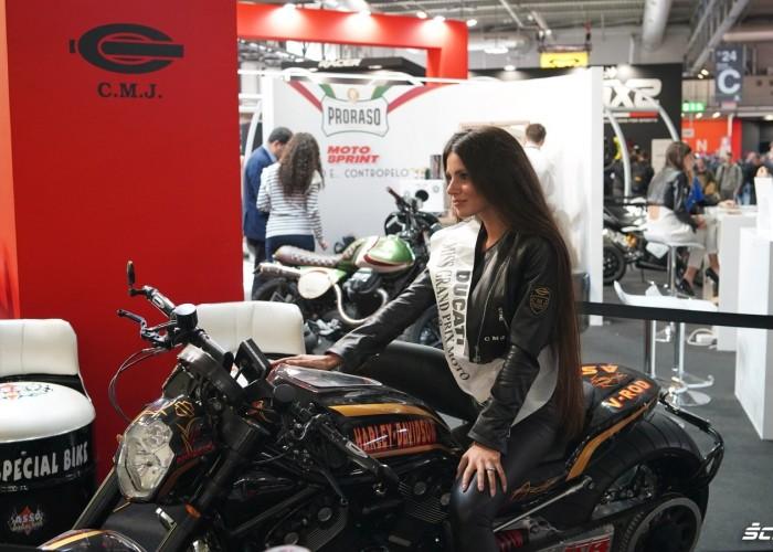 Miss Ducati HD V Rod