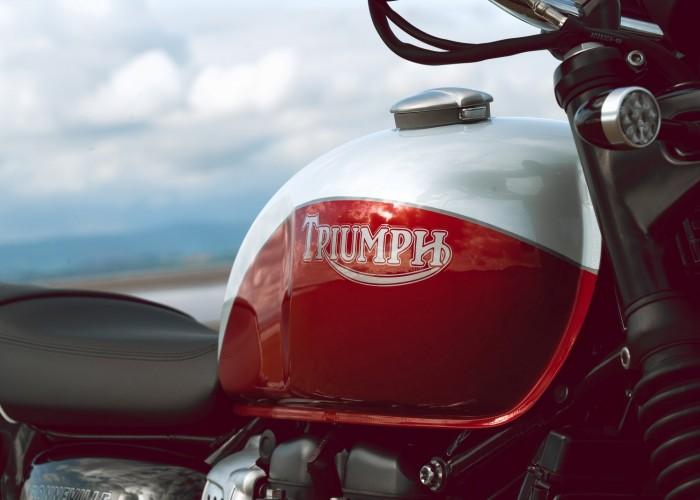 Triumph Bonneville Bud Ekins bak