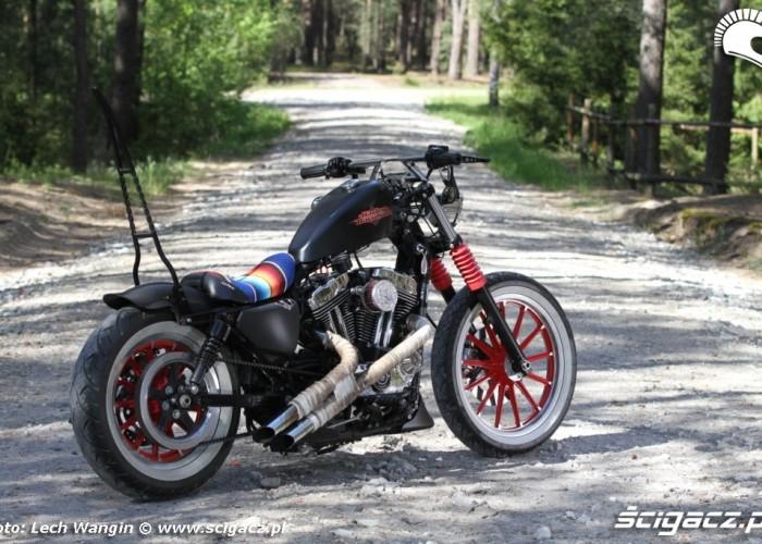 08 Custom Hell Ride Harley Davidson Sportster bok