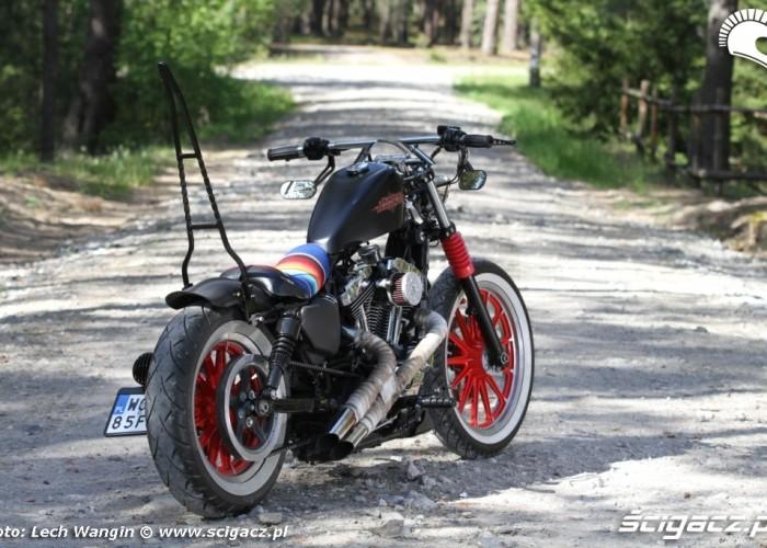 09 Custom Hell Ride Harley Davidson Sportster tyl
