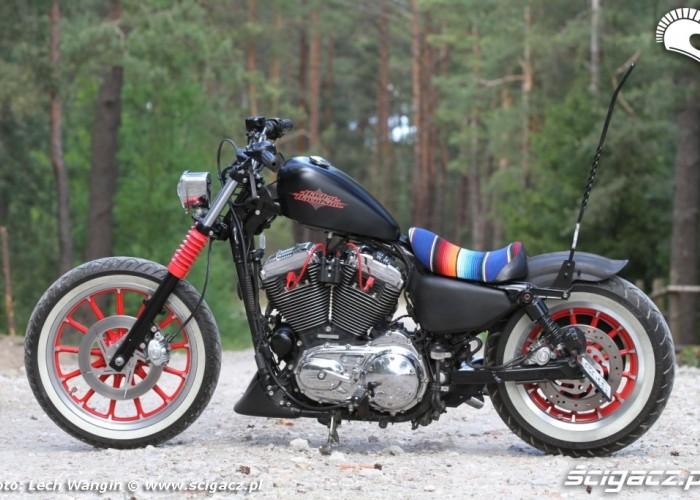 11 Custom H D Sportster