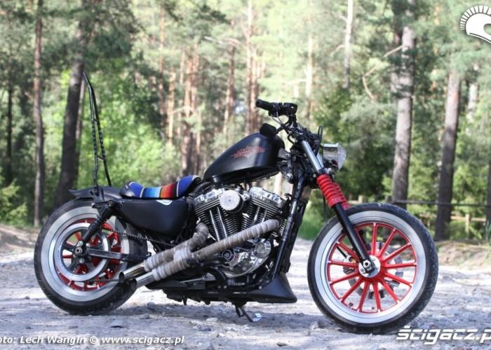 15 Custom Hell Ride Harley Davidson Sportster
